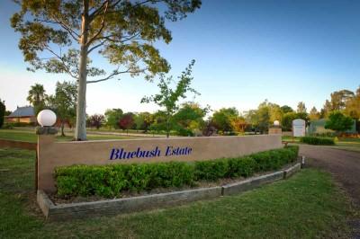 Bluebush Entrance