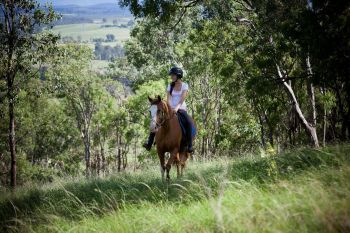 Hunter valley Horse riding